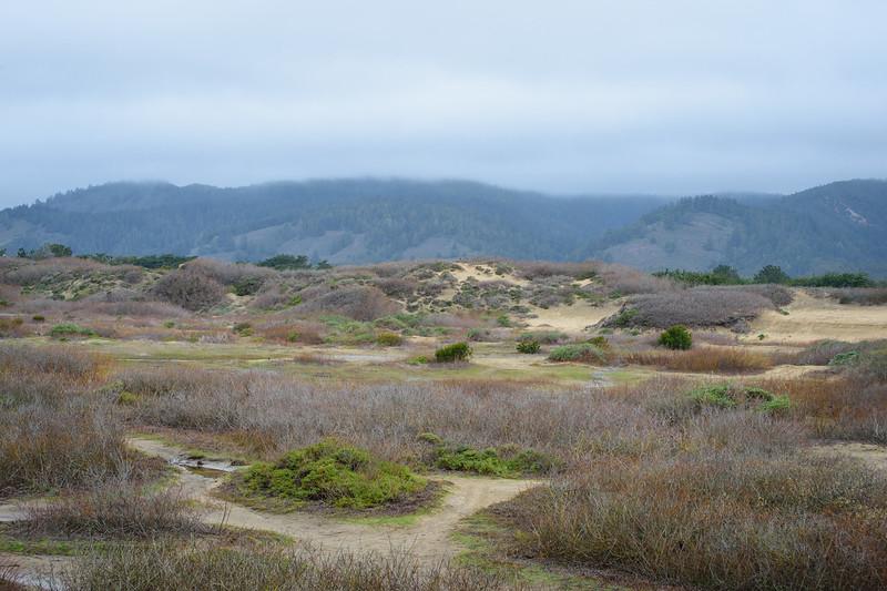 Clouds over the Santa Cruz mountains