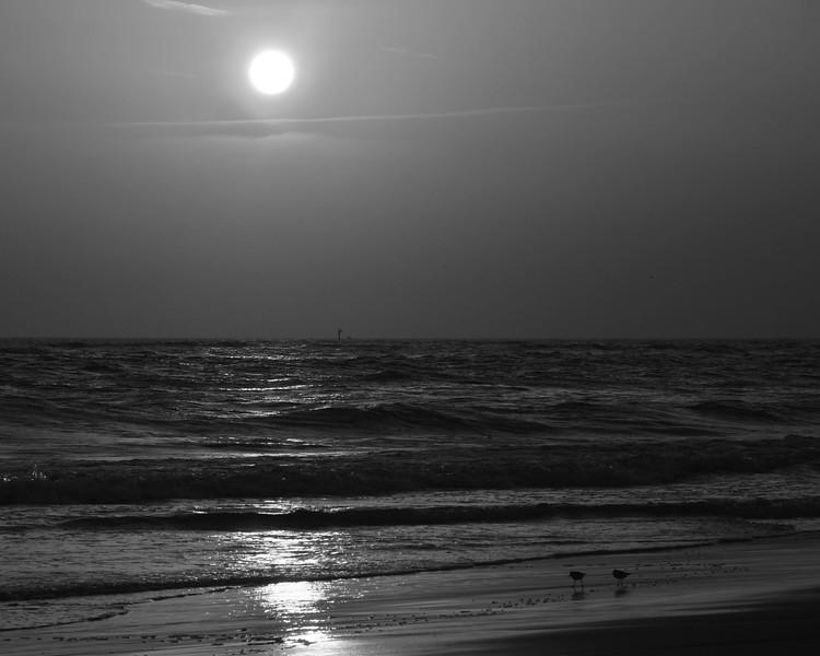 Lido Beach April '17 34