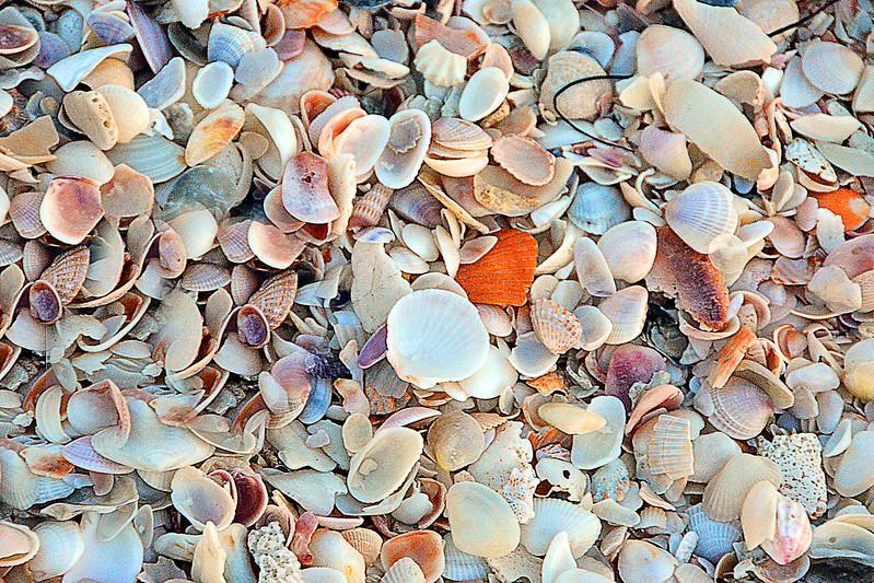 Lido Beach April '17 03