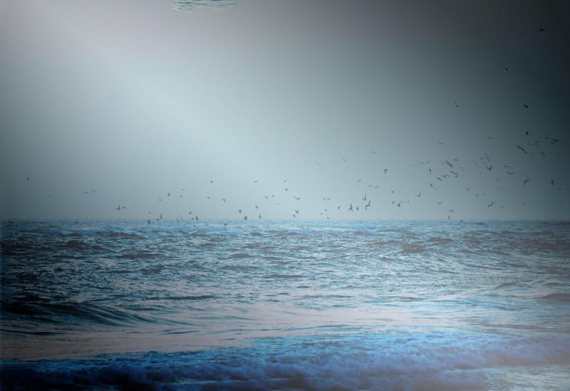 Lido Beach April '17 12