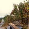 Lido Beach April '17 02