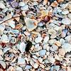 Lido Beach April '17 04