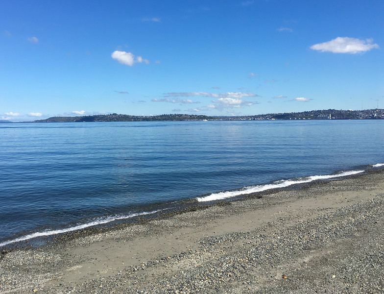 Perfect conditions for my longest Puget Sound swim of the season so far: 1.5 miles