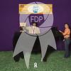 DO17-ASF-2005