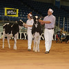 Atlantic17_Holstein_AIMG_9841