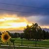 Beautiful Sunset from Vista Bonita 2017 August