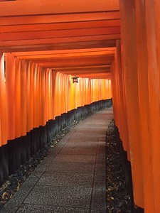 On way to Fushimi Inari Shrine enjoying the Princeton colors-Jessica Mathewson