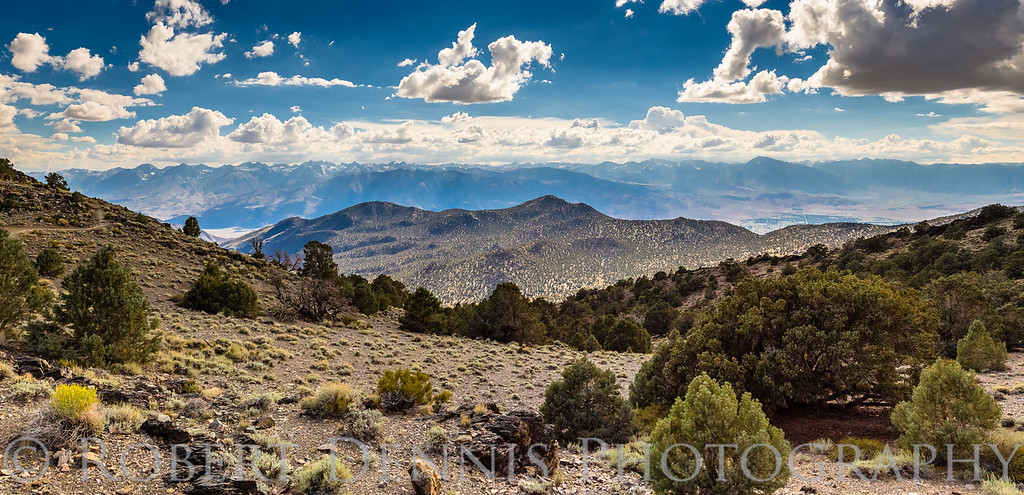 Bristlecone Pine Forest, Patriarch Grove; Schulman Grove, Eastern Sierra Viewpoint; clouds