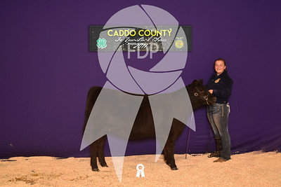 DO17-Caddo-5957