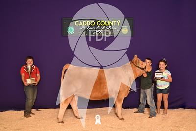 DO17-Caddo-5917