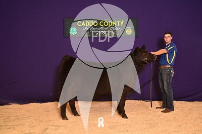 DO17-Caddo-5926