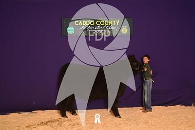 DO17-Caddo-5980