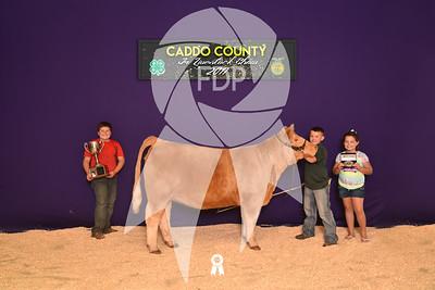 DO17-Caddo-5921
