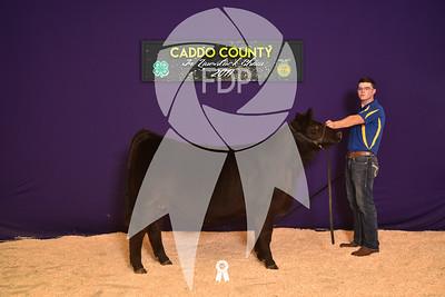DO17-Caddo-5927