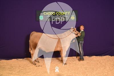 DO17-Caddo-5952