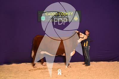 DO17-Caddo-5969