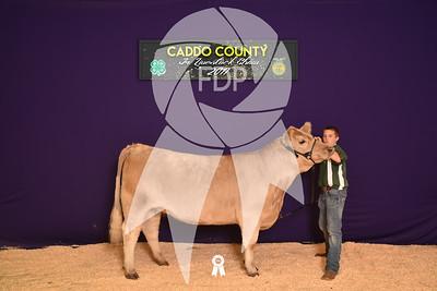 DO17-Caddo-5937