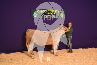 DO17-Caddo-5950