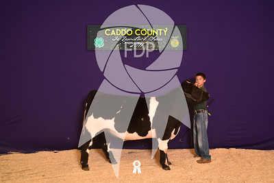 DO17-Caddo-5935