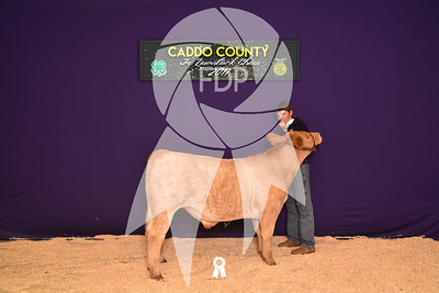 DO17-Caddo-5945