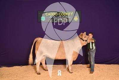 DO17-Caddo-5938
