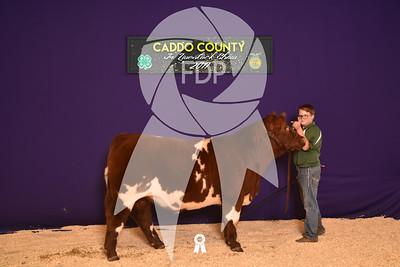 DO17-Caddo-5975
