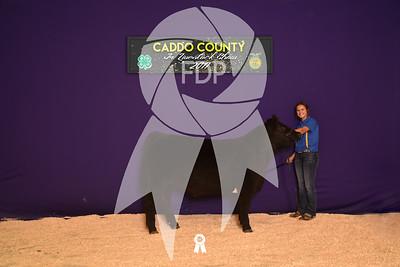 DO17-Caddo-5931