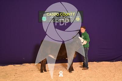 DO17-Caddo-5962
