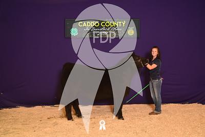 DO17-Caddo-5984