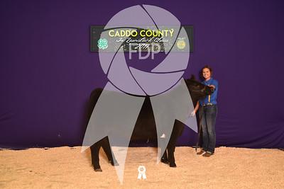 DO17-Caddo-5929