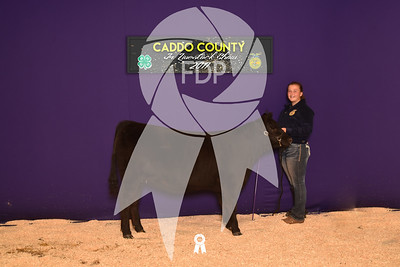 DO17-Caddo-5958