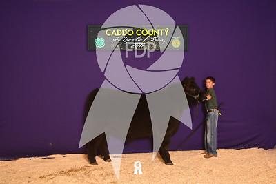 DO17-Caddo-5982