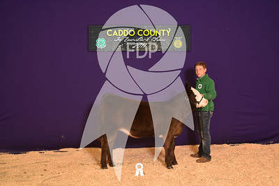 DO17-Caddo-5964