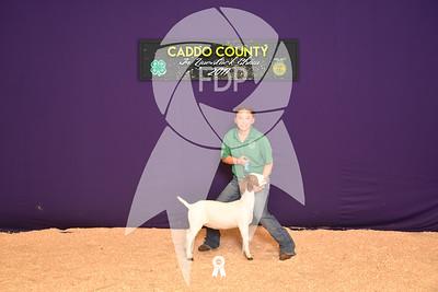 DO17-Caddo-5873