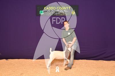 DO17-Caddo-5868