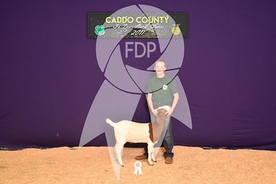 DO17-Caddo-5883