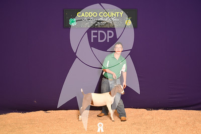 DO17-Caddo-5879