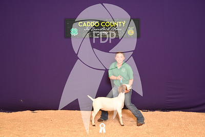 DO17-Caddo-5874