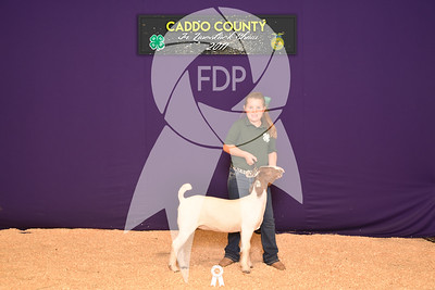 DO17-Caddo-5876
