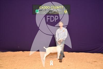 DO17-Caddo-5902