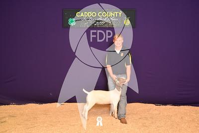 DO17-Caddo-5881