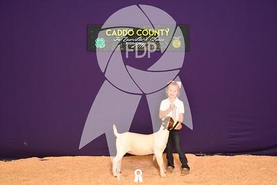 DO17-Caddo-5852
