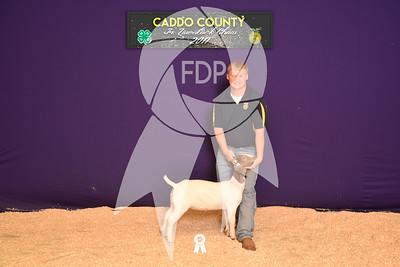DO17-Caddo-5880