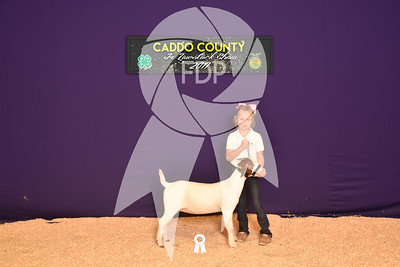 DO17-Caddo-5853