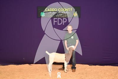 DO17-Caddo-5882