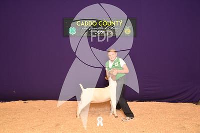 DO17-Caddo-5866