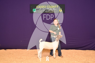 DO17-Caddo-5875
