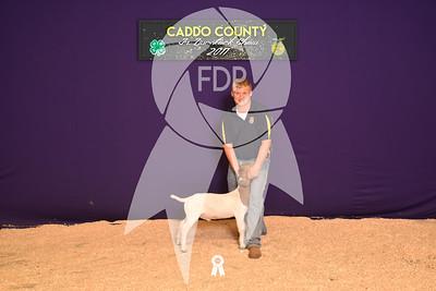 DO17-Caddo-5898