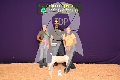 DO17-Caddo-5893
