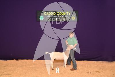DO17-Caddo-5908